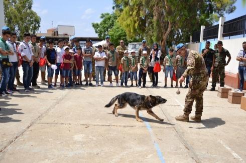 Il Mine Detection Dog è finalizzato al riconoscimento di particelle di sostanze esplosive fino a 30 cm sotto terra