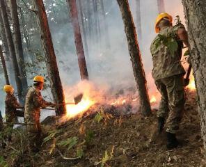 Militari Esercito in attvità di spegnimento fuoco