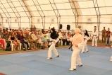 Performance di Taekwondo