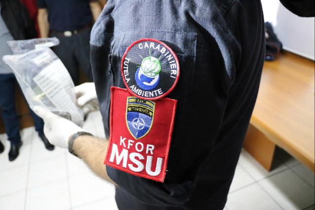 collegamento cultura MSU