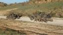 9 - CAT Monteromano addestramento