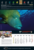 Calendario_2019 CITES