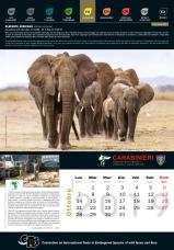 Calendario_2019 CITES10