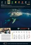 Calendario_2019 CITES11