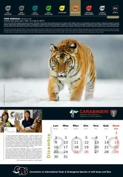 Calendario_2019 CITES12