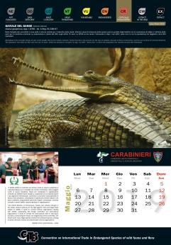 Calendario_2019 CITES5