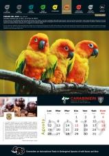 Calendario_2019 CITES8