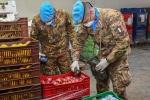 UNIFIL_CS BN_Operazioni di controllo chimico e radiologico alimenti con assetti specialistici CBRN(2)