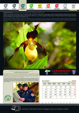 impag_calendario_2020_pagina_06_.jpg