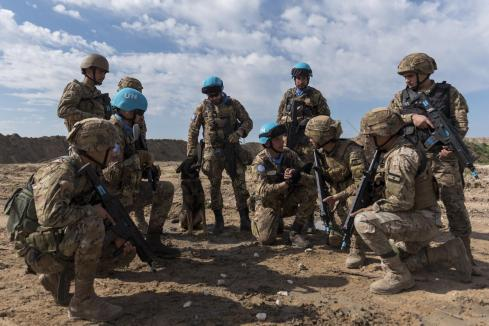 8 - fase dell'addestramento coordinato con le LAF
